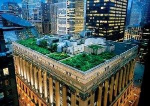 telhado verde da prefeitura de são paulo