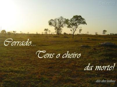 Poetrix - Cerrado