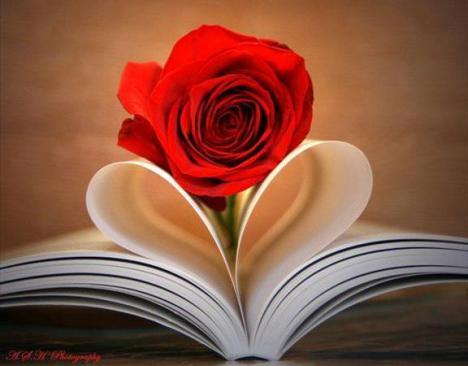 Leia um bom livro