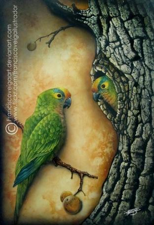 wildlife - ararinha cabeça blog